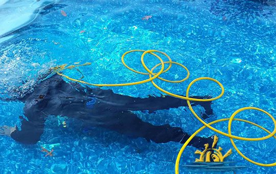 Pool Service Boca Raton Master Touch Pool Services Rated 1