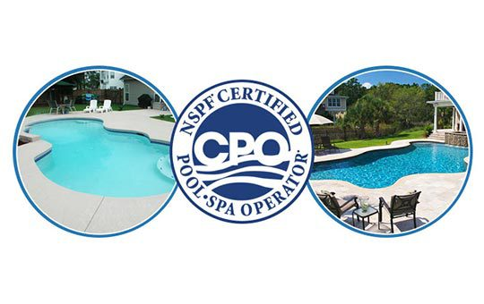 Pool Services You can Trust!